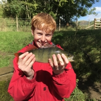 Sight fished on a fly!- nice one